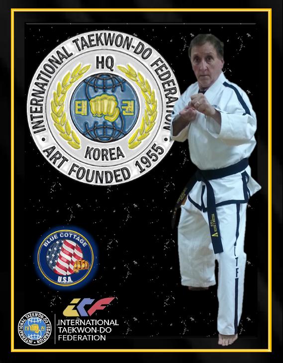 the international taekwondo federation
